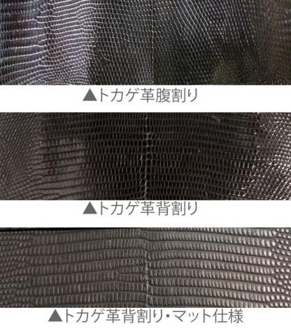 トカゲ黒 三種